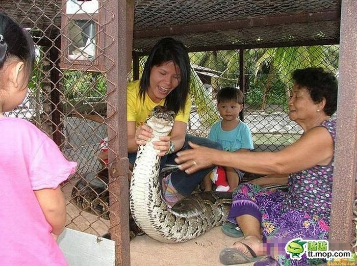 child playing with a large snake