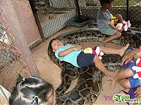 TopRq.com search results: child playing with a large snake