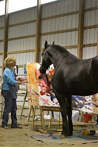 TopRq.com search results: Justin, Friesian horse who paints