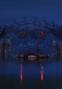 Alligators at night by Larry Lynch