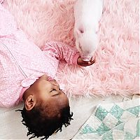 Fauna & Flora: domestic pig pet with a little kid