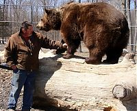 man living with orphaned bears