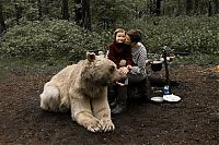 Fauna & Flora: pet bear with a family