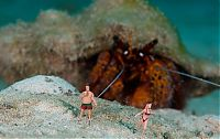 TopRq.com search results: Underwater scenes with toy figures by Jason Isley
