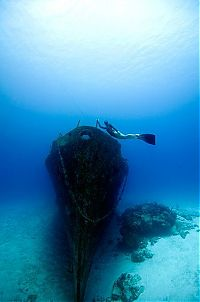 TopRq.com search results: One Ocean One Breath freediving collaboration by Eusebio And Christina Saenz De Santamaria