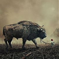 TopRq.com search results: Photo manipulation by Caras Ionut