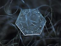 TopRq.com search results: Snowflakes macro photography by Alexey Kljatov