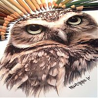 TopRq.com search results: Photorealistic drawing illustrations and tools by Karla Mialynne