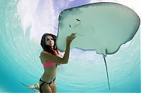TopRq.com search results: Mermaid and the stingray underwater photography by Christian Coulombe