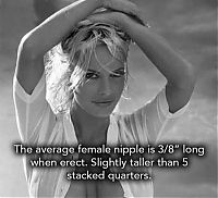 interesting facts about breasts