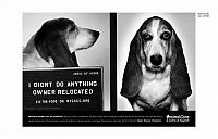 TopRq.com search results: PETA animal protection campaign