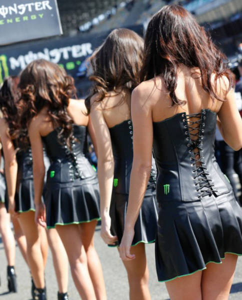 monster energy grid girls
