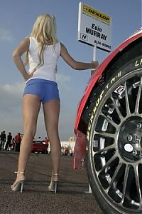 TopRq.com search results: Grid girl for Eoin Murray (GBR), Quest Racing, Alfa Romeo 156