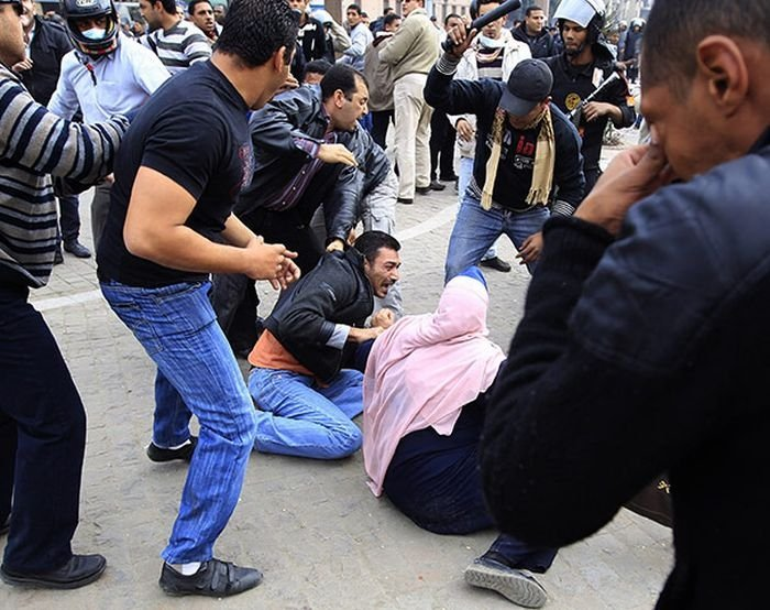 The 2011 Egyptian protests
