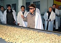 People & Humanity: Kim Jong-il inspection and audit