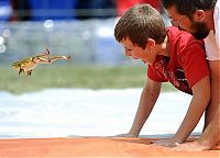 TopRq.com search results: Frog Jump Festival 2010, Ohio, United States