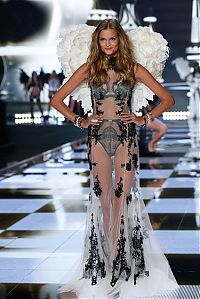 TopRq.com search results: 2015 Victoria's Secret Fashion show girl
