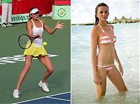 TopRq.com search results: top tennis babes