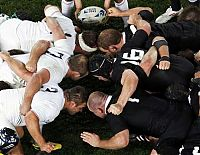 TopRq.com search results: 2011 Rugby World Cup, New Zealand