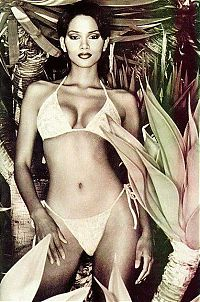 Celebrities: halle berry