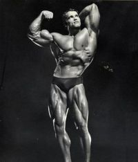 TopRq.com search results: Arnold Schwarzenegger