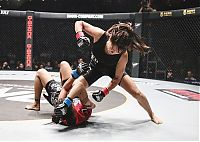 Celebrities: Angela Lee