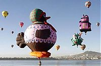 TopRq.com search results: air balloon