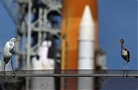TopRq.com search results: Space shuttle Discovery launched, United States