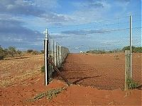 TopRq.com search results: The longest fence in the world, 5614 km, Australia