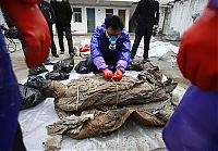 TopRq.com search results: 700 year-old mummy discovery, Ming dynasty, Taizhou, China