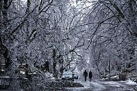 TopRq.com search results: 2013 Central and Eastern Canada ice storm, Toronto, Ontario, Canada