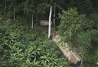 TopRq.com search results: Lost uncontacted tribe, Alto Tarauacá, Acre state, Brazil