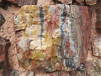TopRq.com search results: Petrified Forest National Park, Navajo, Apache, Arizona, United States