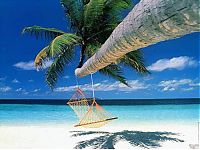 TopRq.com search results: Bora Bora, Society Islands, French Polynesia, Pacific Ocean