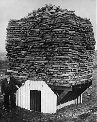 TopRq.com search results: History: World War II photography, Anderson shelter